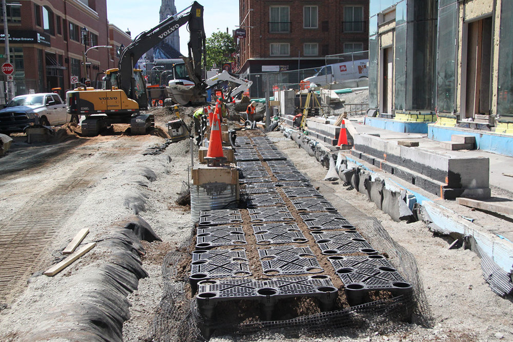 Silva Cells support the weight of the pavement structure above to keep soil loose and give tree roots room to grow