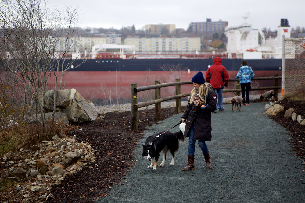 The lookout and trail provide an ideal location to watch ships entering and existing the port.