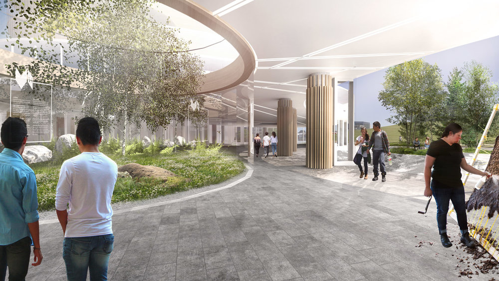 Within the oculus is a large Black Ash tree and planting native to the region, bringing the outdoors in.