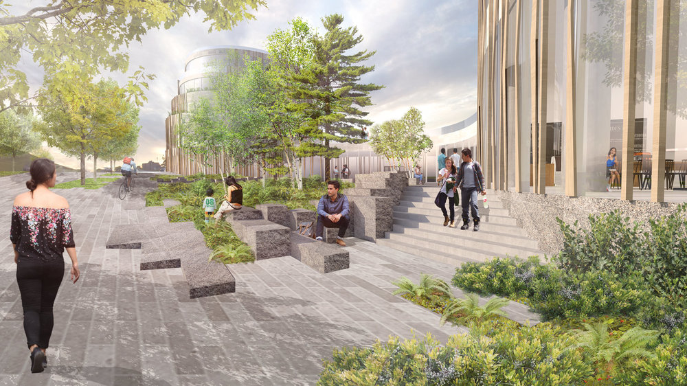 Large granite blocks create planting areas, opportunities for seating, and evoke the rocky terrain of Nova Scotia