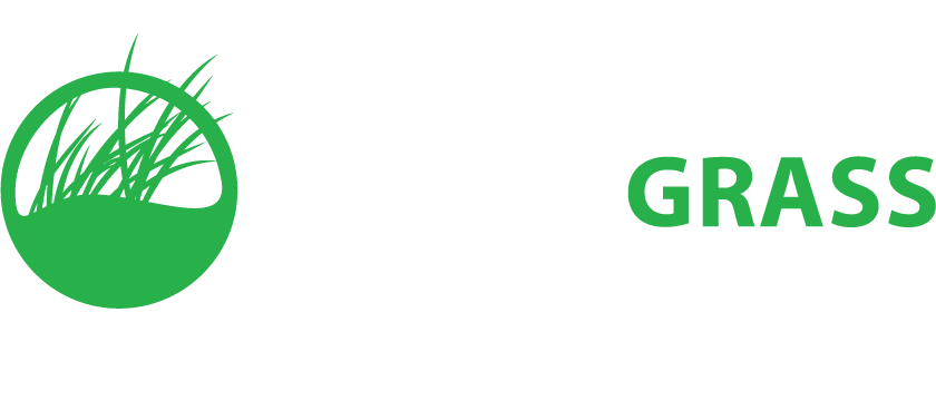 Rymar Synthetic Artificial Grass