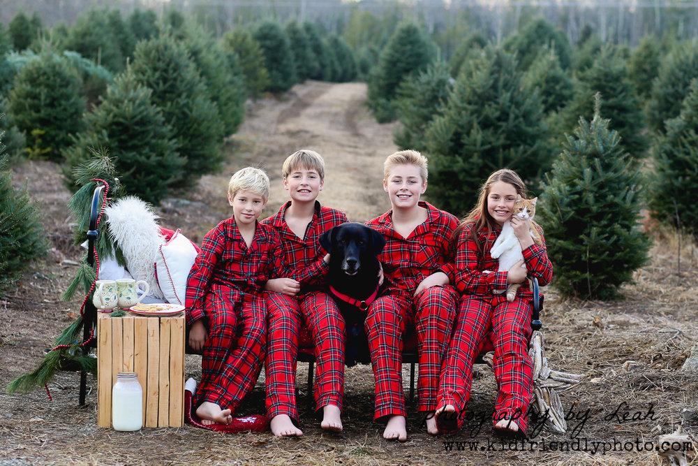 christmas 2017-6443.jpg