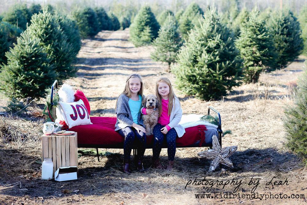 christmas 2017-6532.jpg