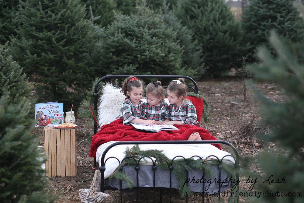 christmas bed-7220.jpg