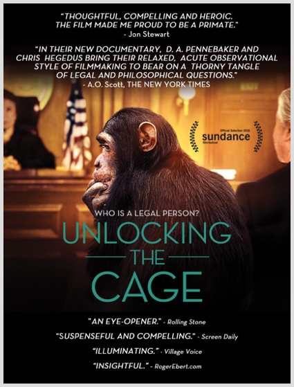 Unlocking The Cage - Synopsis Image
