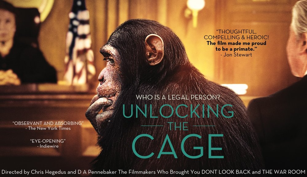 unlocking_the_cage-film.jpg