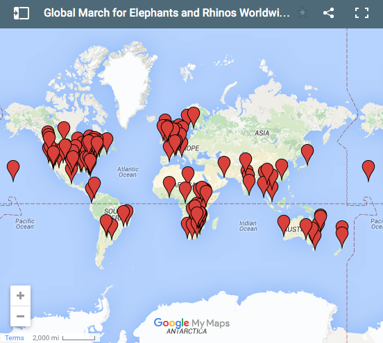 over 140 cities MARCHED in 2015 / 2016