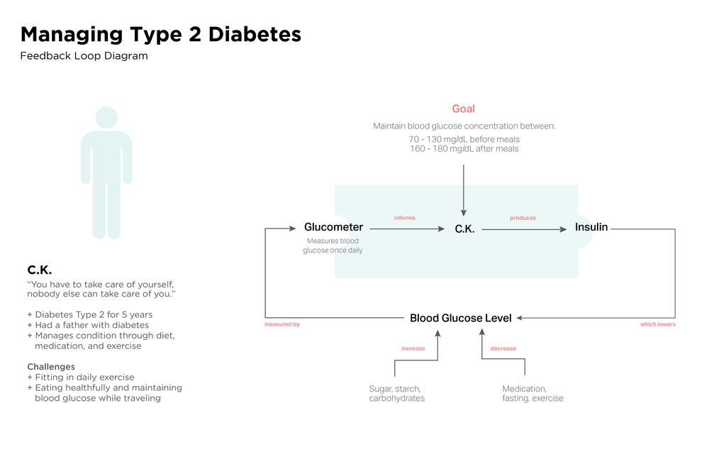 Diabetes_New Colors_1 -- Feedback Loop.png