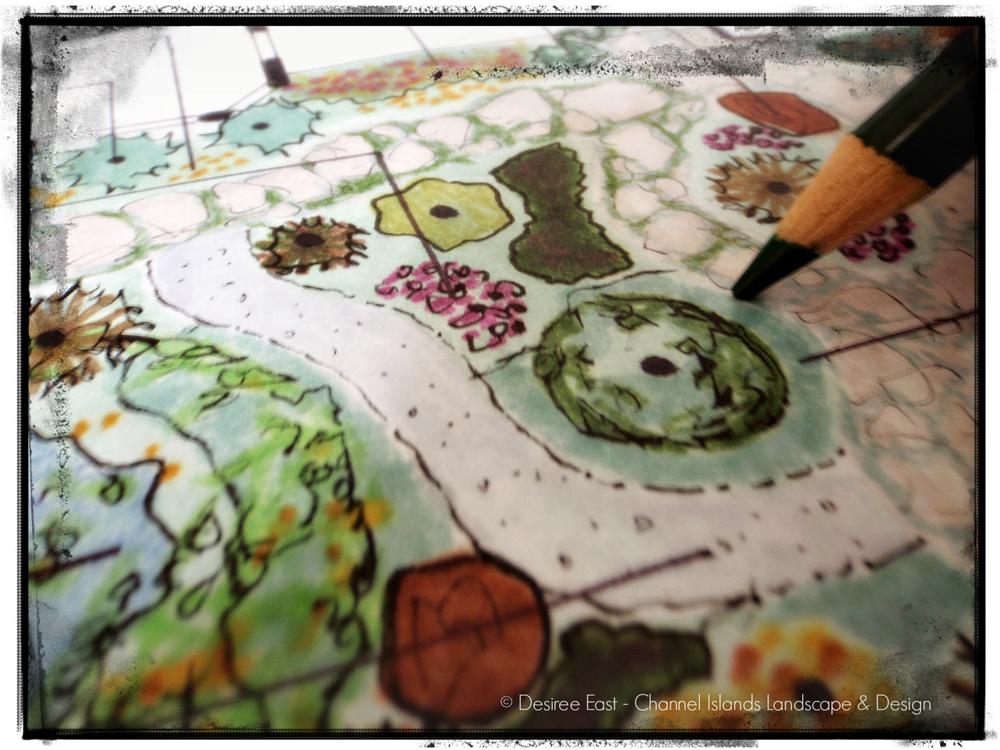 landscape designer ventura