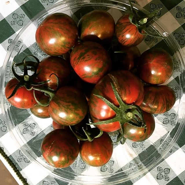 Meet the bumbles! Beautiful and delicious tomatoes grown on our roof in @vermontcompost soil with @johnnys_seeds