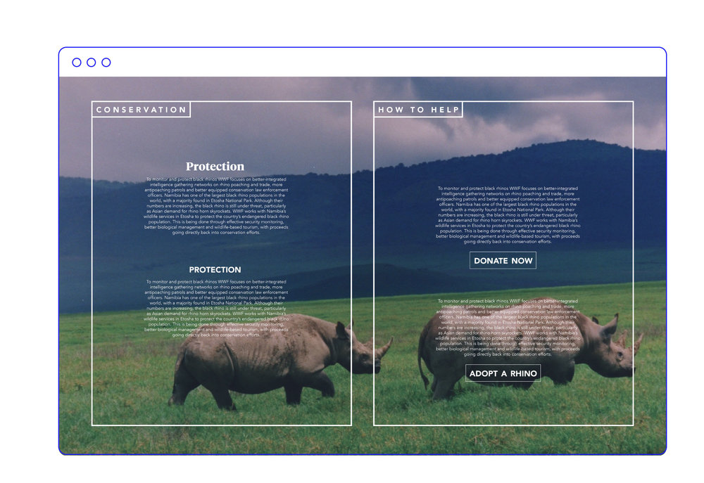 B&F_Web10.jpg