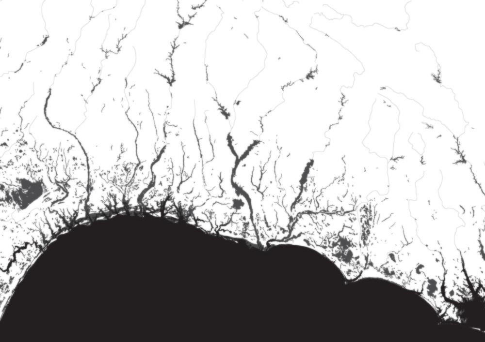 Rivers and wetlands along the Carolina coast. (Image by Author).