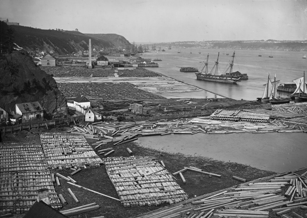 Image 9:  Timber coves at Quebec City, Que. , reversed glass plate negative, 1872 (William Notman) © McCord Museum