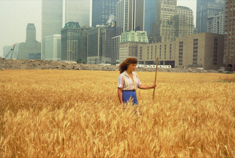 Wheatfield – A Confrontation: Battery Park Landfill in Downtown Manhattan – With Agnes Denes Standing in the Field, 1982. Photograph by John McGrail. Copyright Agnes Denes, Courtesy Leslie Tokonow Artworks + Projects, New York
