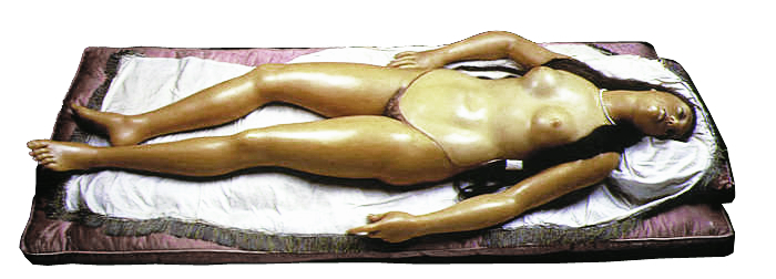 "Image 16 / Clemente Susini, Anatomical Venus, ""open"" position, 1782. Wax anatomical model. La Specola, Florence"