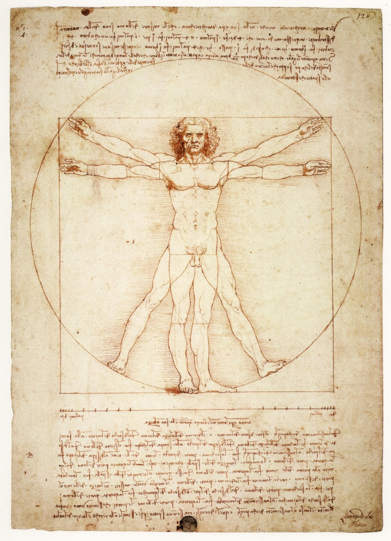 Image 20 / Leonardo da Vinci, Vitruvian Man, c. 1490. Pen and ink with wash over metalpoint on paper. Gallerie dell'Accademia, Venice, Italy