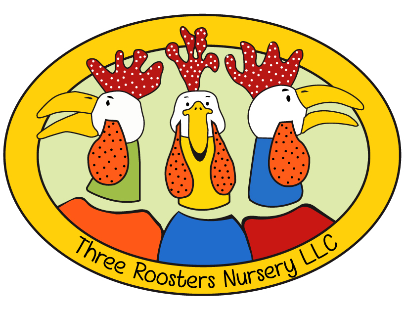 Logo copy 2.jpg