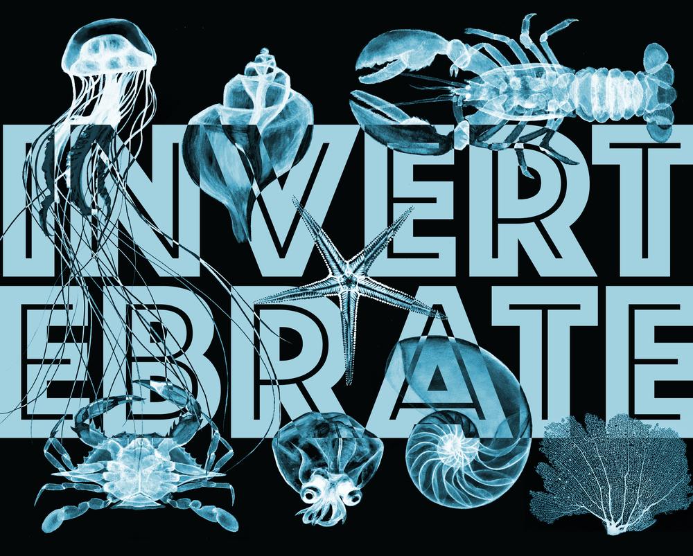 invertebrates2-01.png
