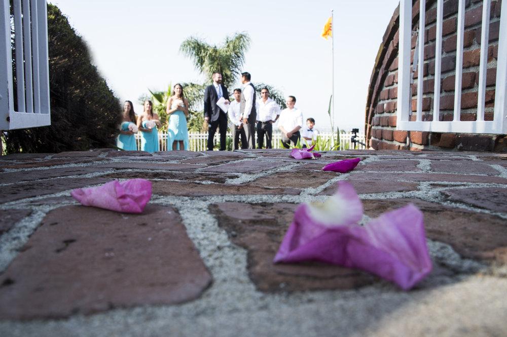 wedding_724.jpg