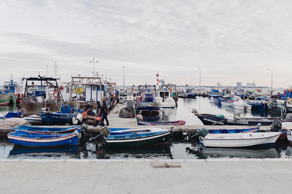 Setubal_porto_19