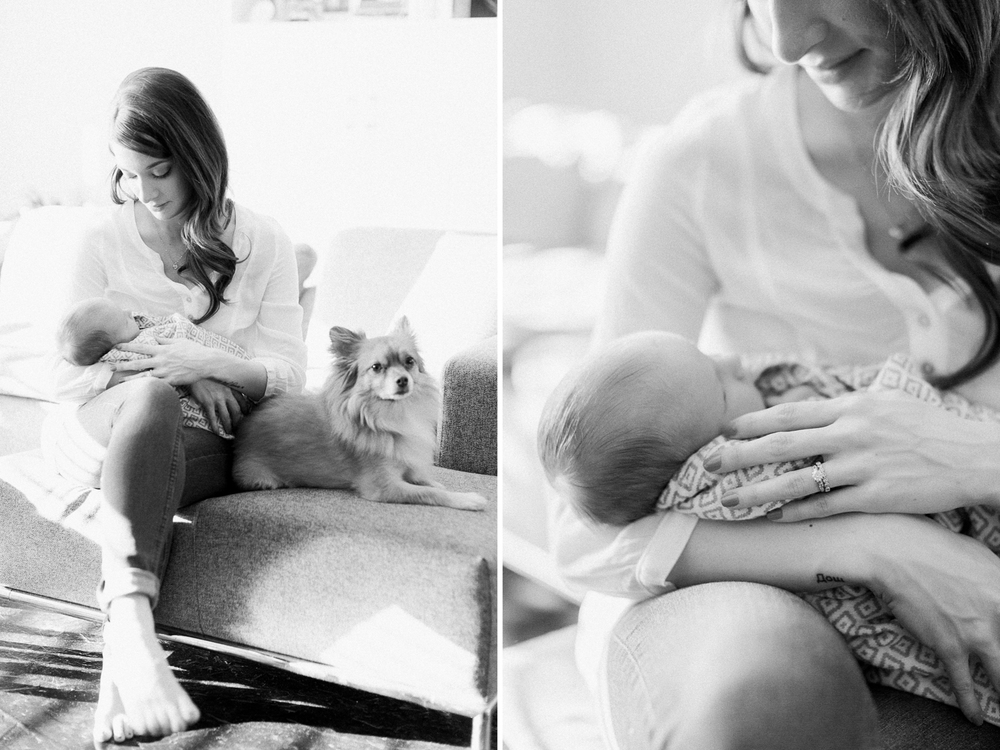calgary-newborn-photography-photographer-home-bright-modern-winter-maternity-puppy.jpg