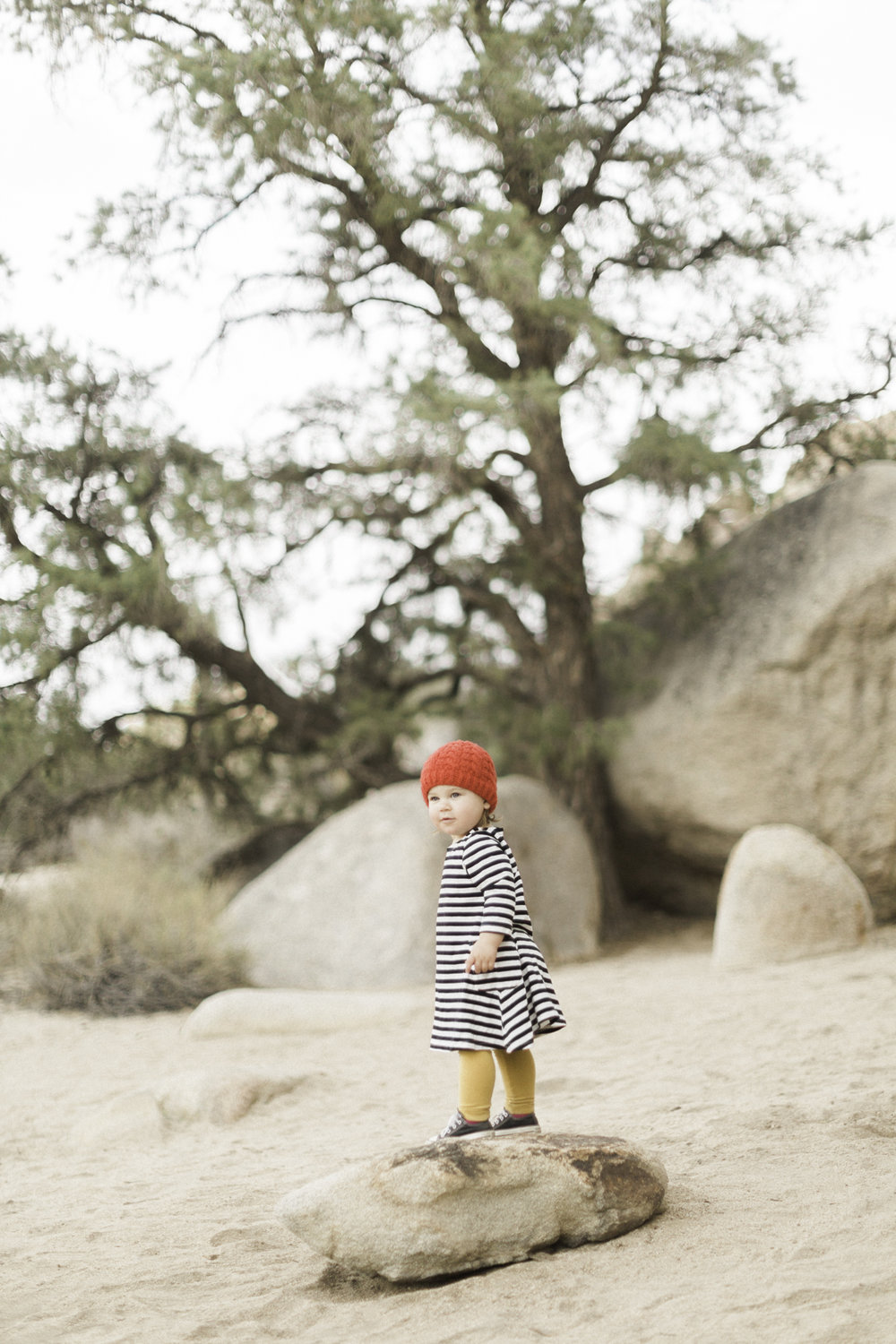 Joshua-Tree-calgary-kids-photography-shop-the-skinny-2.jpg