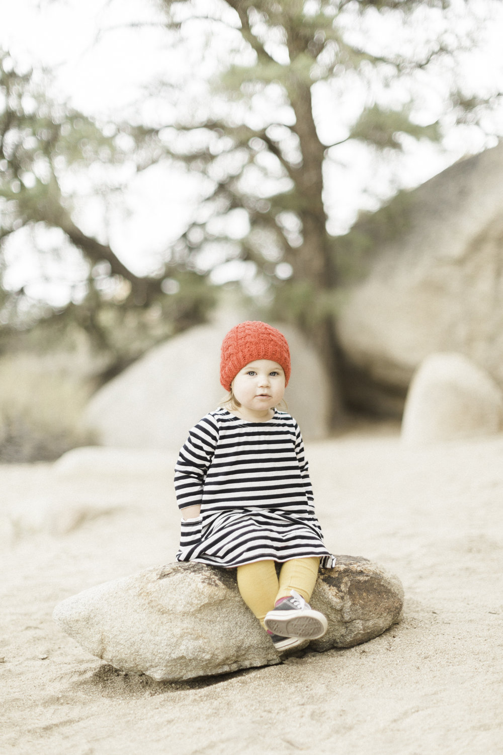 Joshua-Tree-calgary-kids-photography-shop-the-skinny-5.jpg