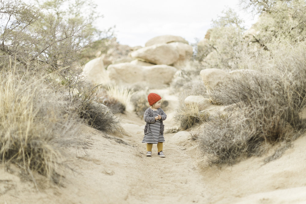 Joshua-Tree-calgary-kids-photography-shop-the-skinny-21.jpg