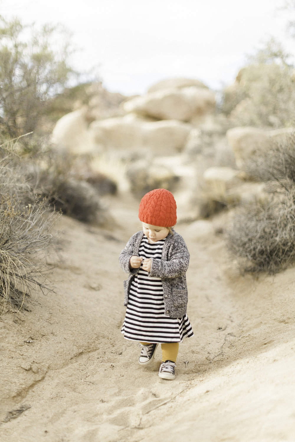 Joshua-Tree-calgary-kids-photography-shop-the-skinny-22.jpg