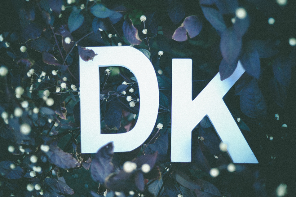 san   diego wedding photographer | big white letters K and D in middle of plants
