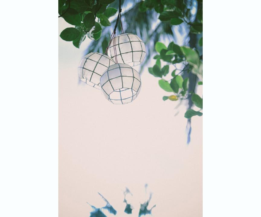 san   diego wedding photographer | shot of lanterns hanging on tree branches