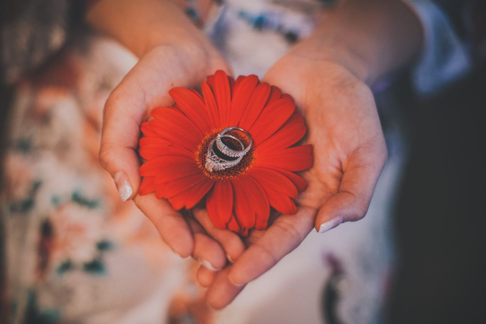 san   diego wedding photographer | hands holding red flower with wedding rings on   top