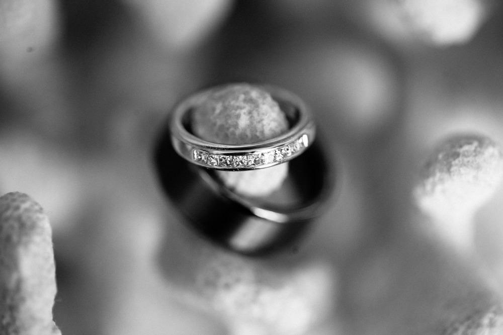 san   diego wedding photographer | monotone shot of wedding rings hanging on   something