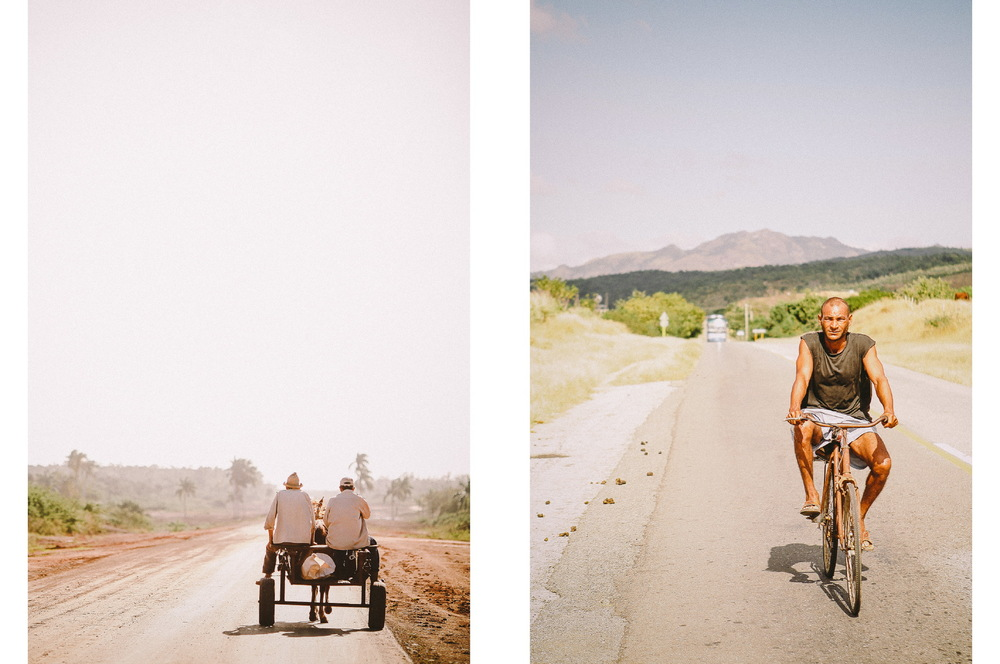 san diego wedding   photographer | collage of horse drawn carriage and man biking