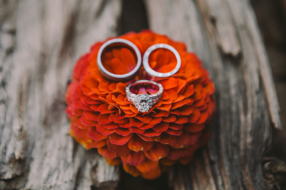 san diego wedding   photographer | rings on a vibrant colored flower