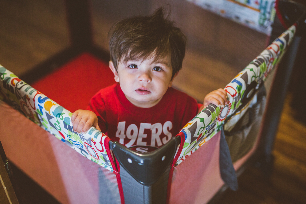 san diego wedding   photographer | toddler looking up