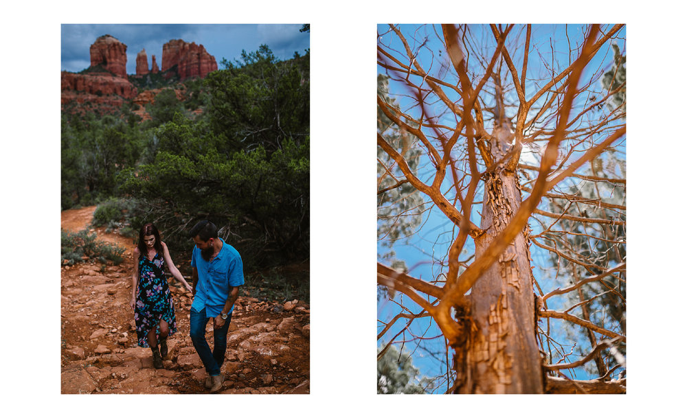 san diego wedding   photographer | collage of bearded man in blue leading woman with dead tree