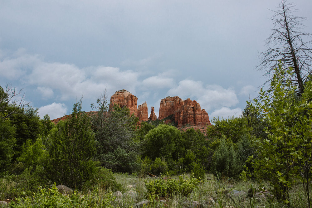 san diego wedding   photographer | far shot of rocky terrain with trees