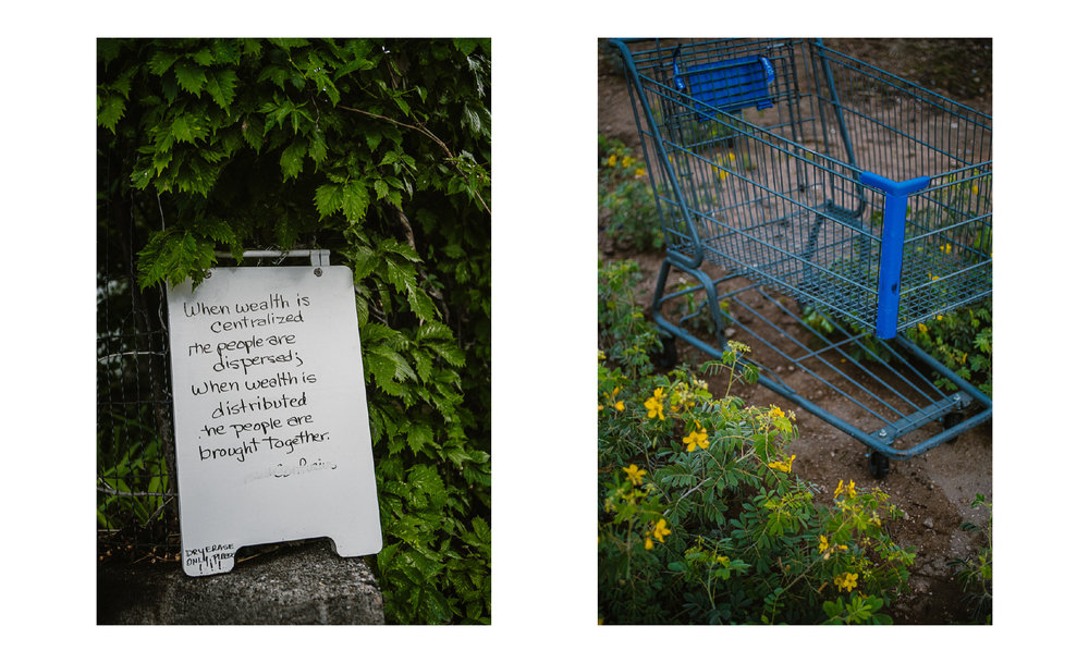 san diego wedding   photographer | collage of sign and blue shopping cart