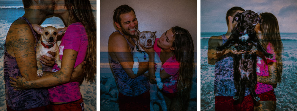 san   diego wedding photographer | collage of couple with dogs with seascape   projected on them