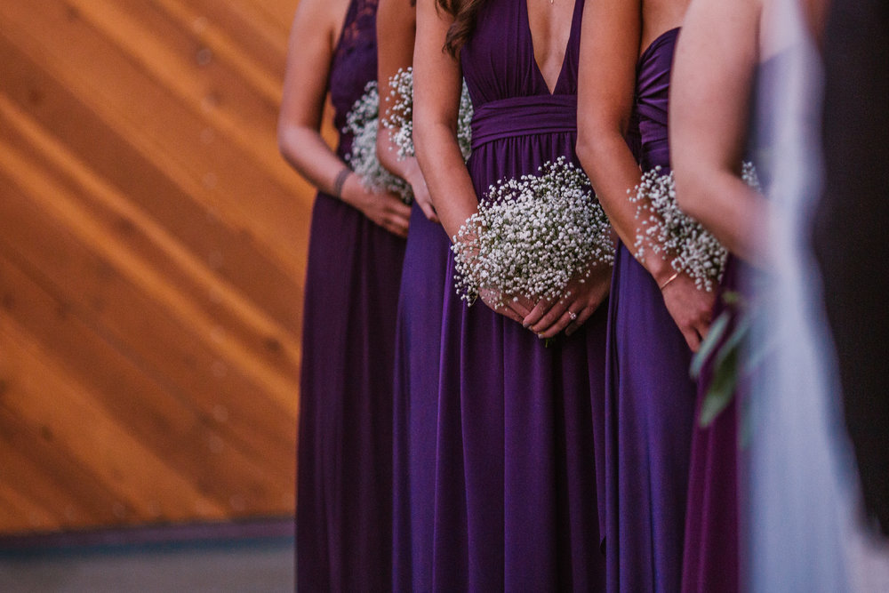 san diego wedding   photographer | bridesmaids in purple lined up