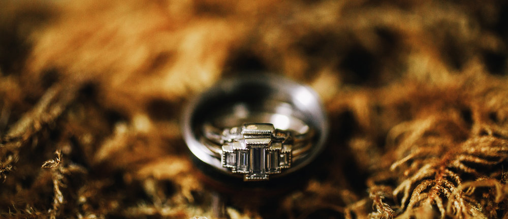 san diego wedding   photographer | picture of rings sitting on ferns