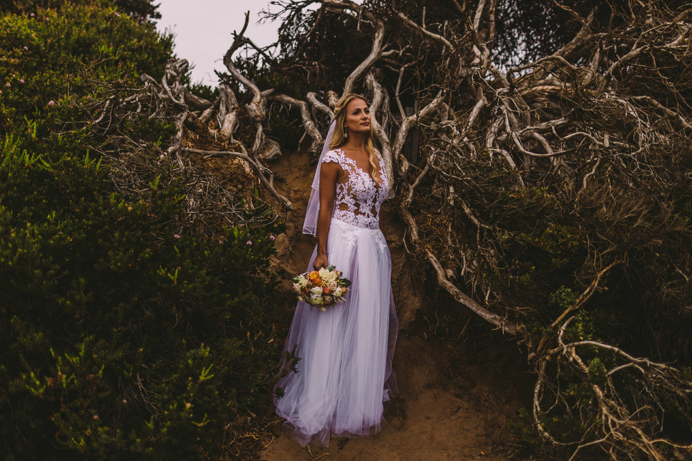 san diego wedding   photographer | bride standing near uprooted tree