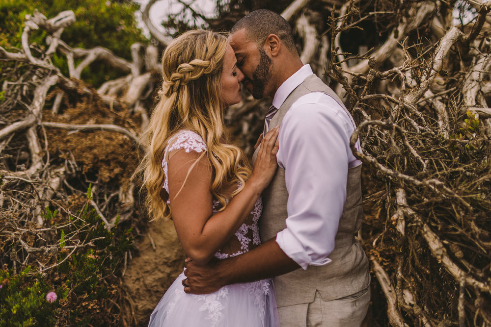 san diego wedding   photographer | married couple kissing by uprooted tree with man's arms on   woman's waist