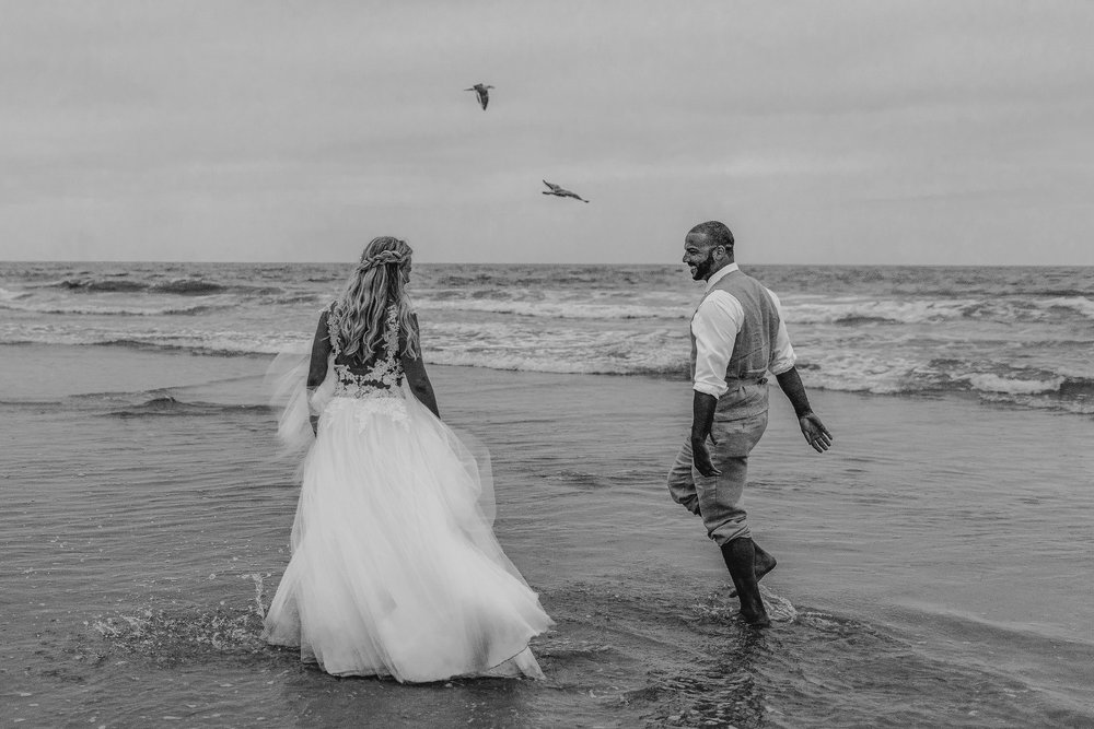 san diego wedding   photographer | black and white shot of couple laughing on shore with birds   overhead