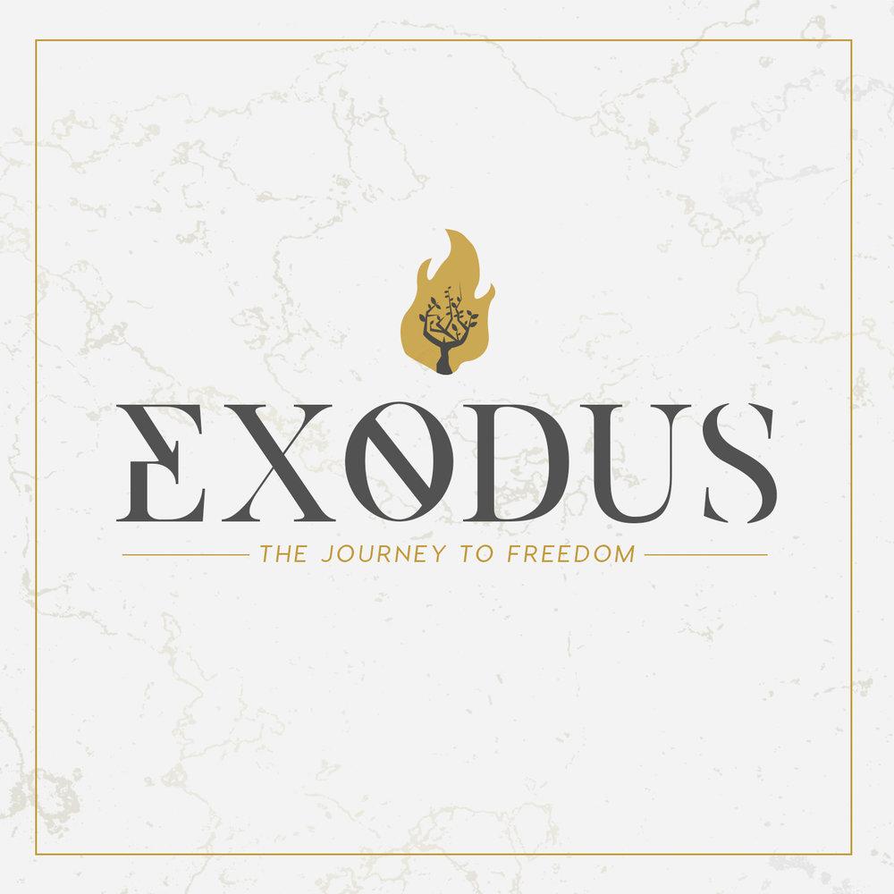 Exodus_Instagram.jpg