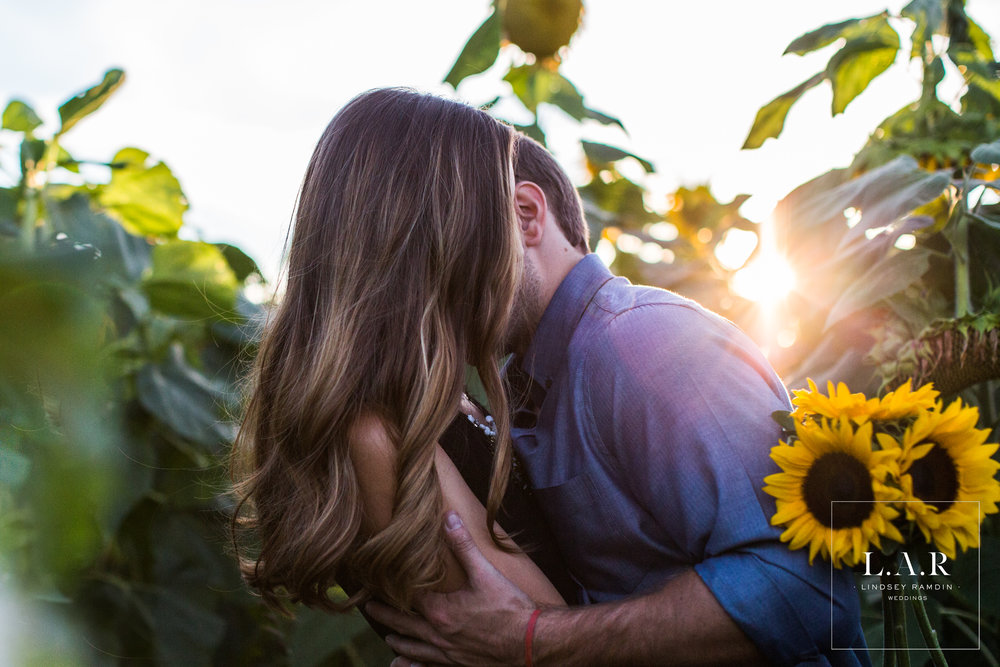 Sunflower Field Engagement Session | L.A.R. Weddings