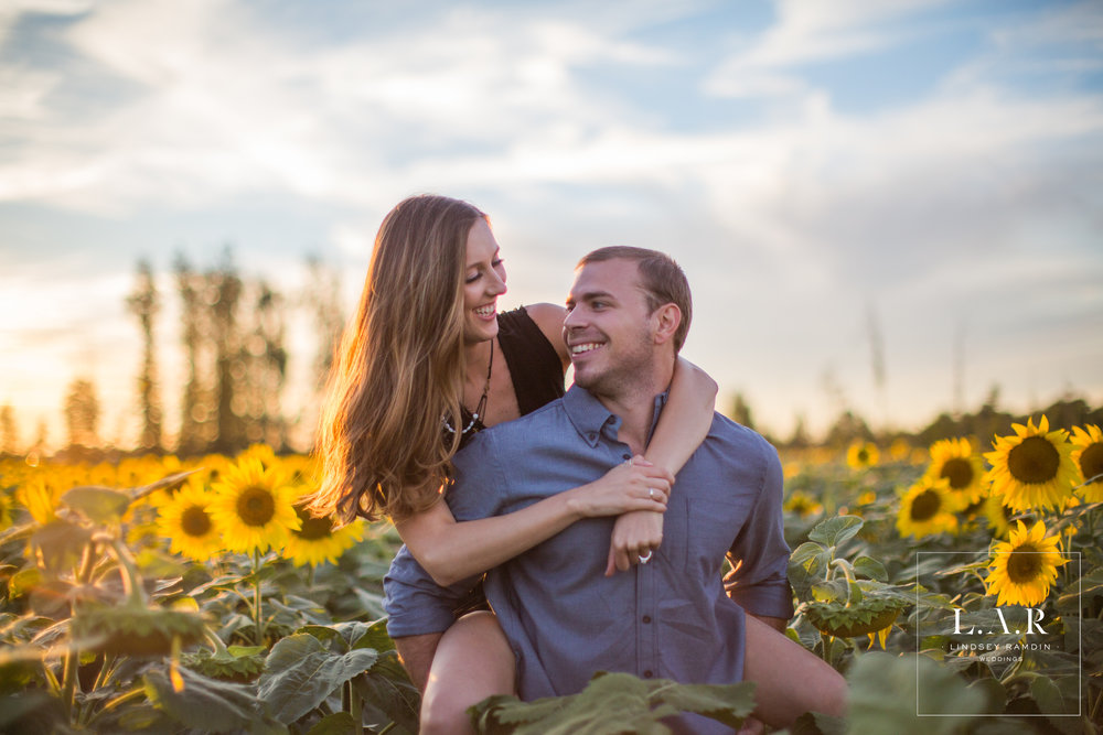Sunflower Field Engagement Photos   L..A.R. Weddings