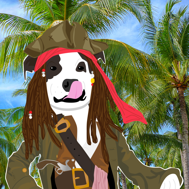 pirate_bahs.png