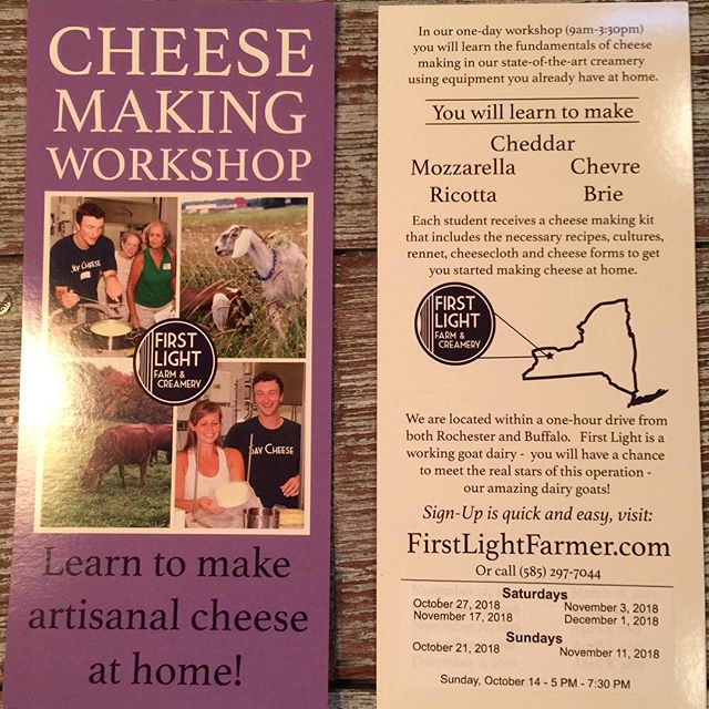 Come join us at the farm this fall!  #workshop #cheeseworkshop #onedayworkshop #cheesemaking #sorryfortheglare #funday #deliciouslunch #meetthegoats #bringafriend  It's a one-day workshop you'll never forget!